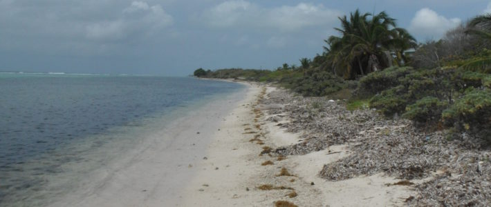LITTLE CAYMAN EAST BLK 88A PARCEL 58 SOUTH SHORE (REDUCED) (Contract Pending Conditional)